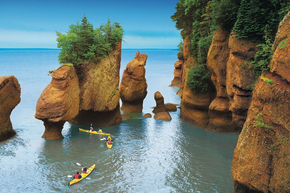 Bay-of-Fundy_54_990x660